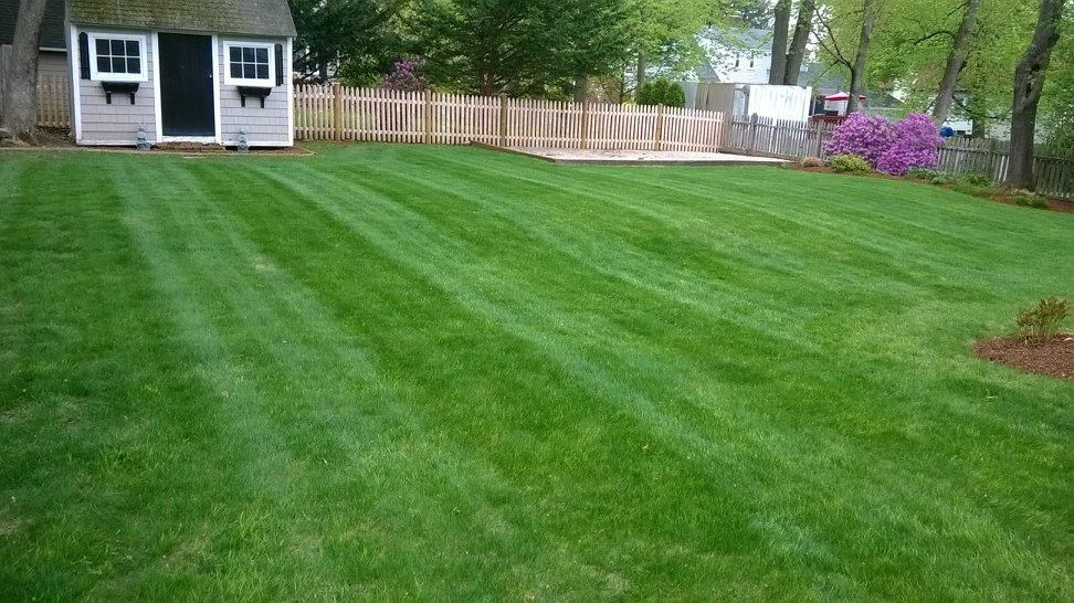 Sunny Day Yard Services – Your main landscaping solution in